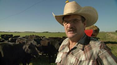 Szenenbild: Porträt des US-Farmers Howard Vlieger, im Hintergrund Rinder