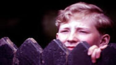 Ein Junge guckt über einen Gartenzaun.