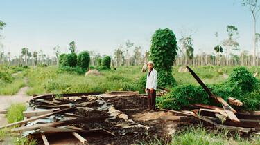 Szenenbild: Kleinbauer auf den Resten seiner zerstörten Hütte