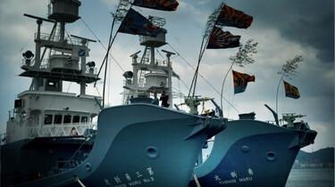 Szenenbild: Zwei Schiffe auf dem Meer