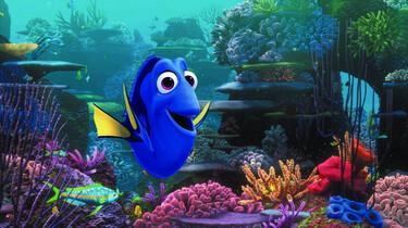 Szenenbild des Animationsfilms: Die fröhliche Dorie inmitten eines Korallenriffs