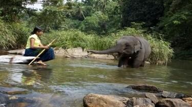Szenenbild: Ein Elefant steht im Wasser. Eine Frau sitzt am Rand auf einem Stein