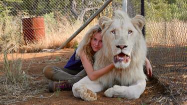 Link zum FilmTipp Mia und der weiße Löwe