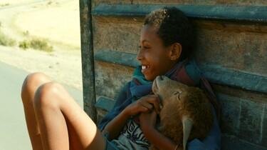 Ephraim und das Lamm, Neue Visionen Filmverleih