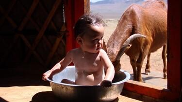 Szenenbild: Ein Baby in Waschschüssel wird von einer Ziege beschnuppert