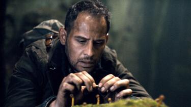 Szenenbild: Moritz Bleibtreu als Urs Blank pflückt Pilze im Wald.