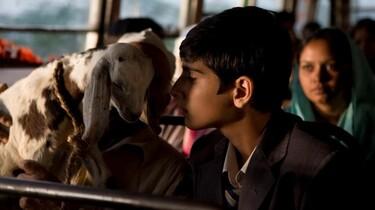 Szenenbild: Junge im Bus mit einer kleinen Ziege