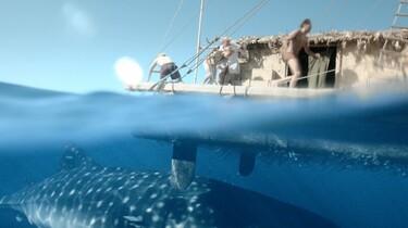 Szenenbild: Ein Wal schickt sich an, das Floß emporzuheben