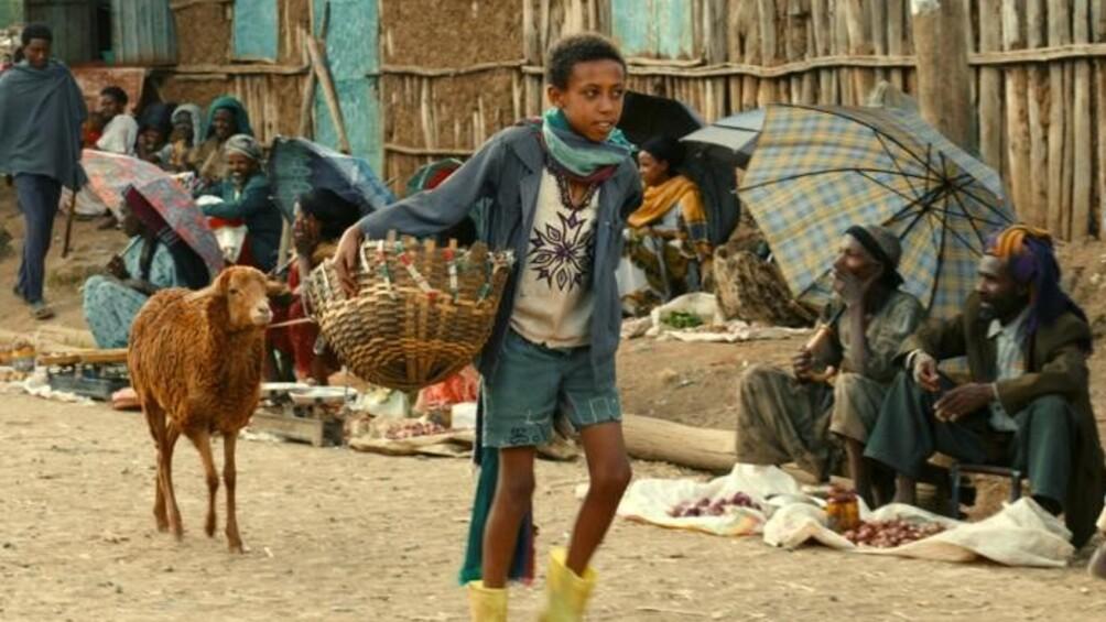 kleiner Junge geht mit Lamm auf staubiger Straße entlang
