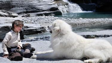 Szenenbild: Sebastian und seine große weiße Hündin Belle sitzen auf Steinen an einem kleinen Gebirgssee