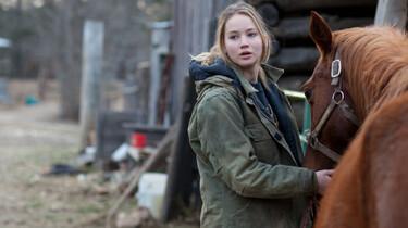 Szenenbild: Ein Mädchen mit einem Pferd vor einem Pferdehänger